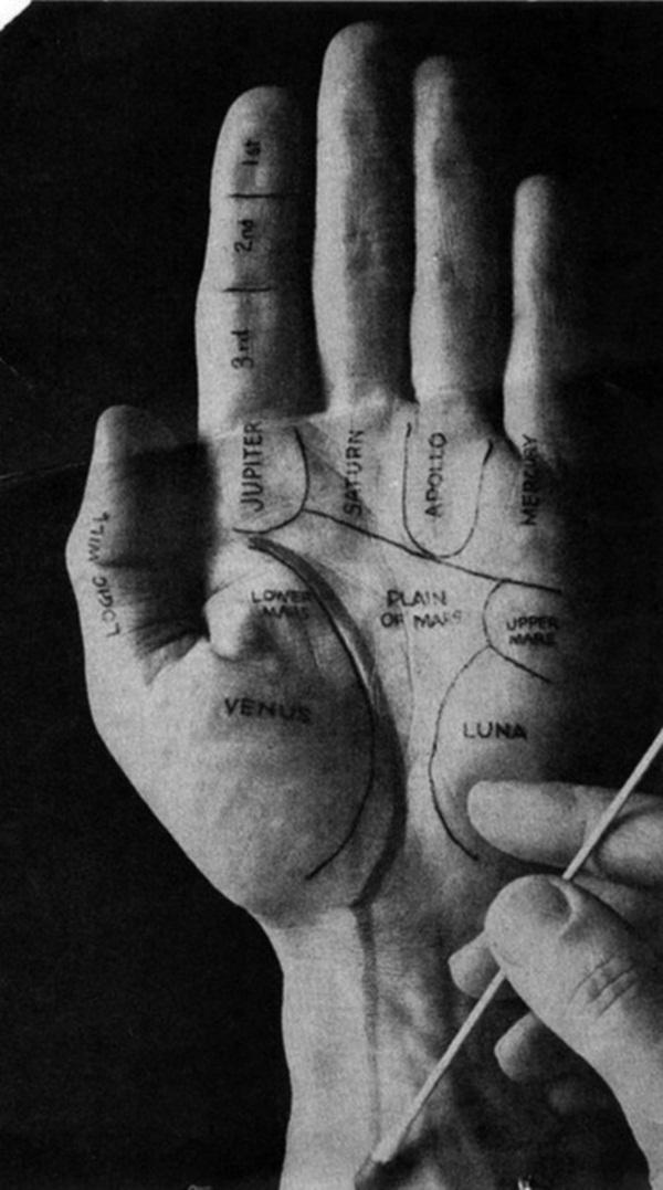 palm tattoos (16)