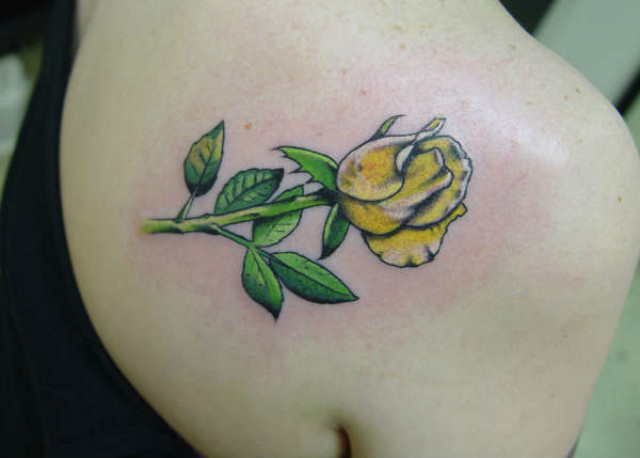 50 Beautiful Rose Tattoo Designs For Girls